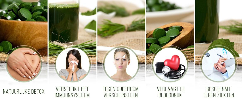 Vijf voordelen van chlorella - natuurlijke detox, sterk immuunsysteem, tegen ouderdom, verlaagt bloeddruk en bescherming