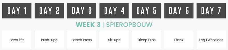 Week 3 kalender spieropbouw met dagelijkse oefeningen