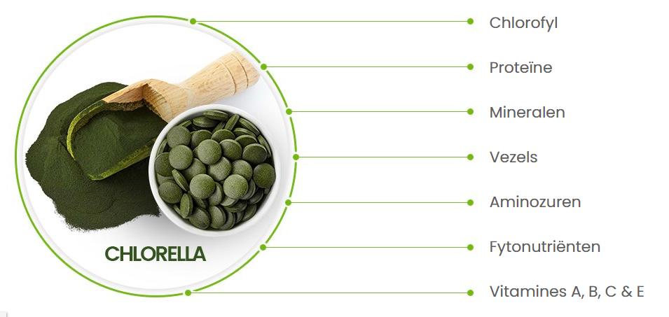 Klein schaaltje met chlorella tabletten en een houte lepel met chlorella poeder