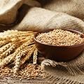 Een paar zaken met granen, wat losse graanstelen en een schaaltje met granen