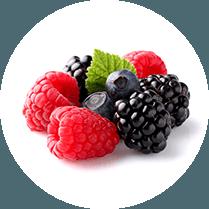 Vruchten en Bessen