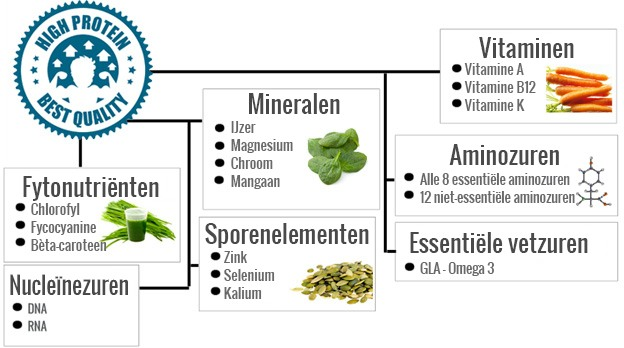 Info bio spirulina - Informatie over de voedingswaarde in spirulina