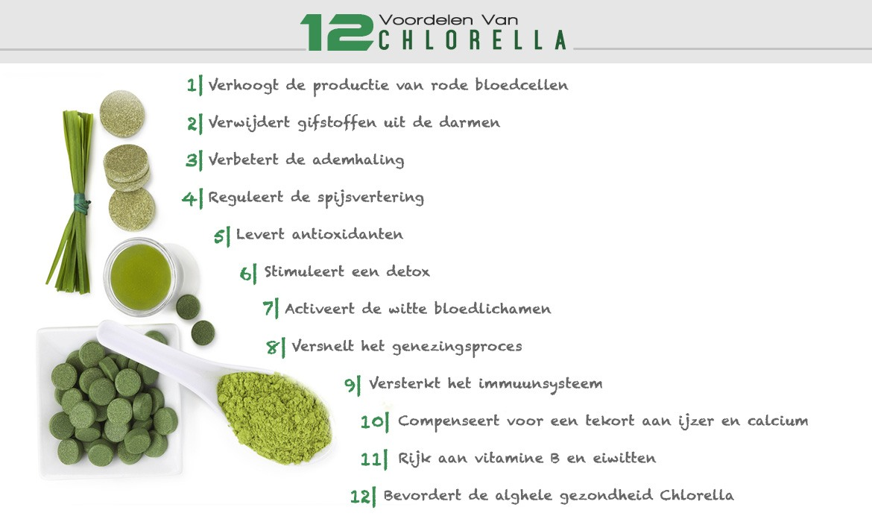 Inforgraphic bio super chlorella - 12 voordelen van chlorella
