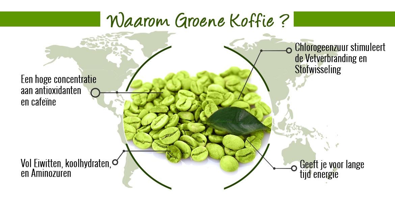 Infographic green coffee - Groene koffie bonen met er omheen verschillende reden waarom je groene koffie moet kiezen