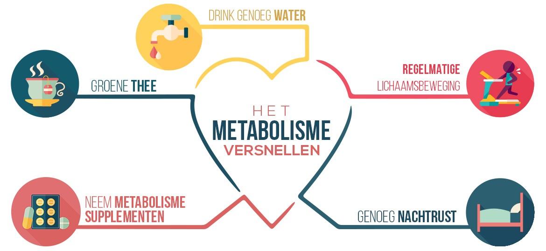 Infographic metabolisme booster - Drink genoeg water, groene thee, beweging, metabolisme supplemten en genoeg nachtrust