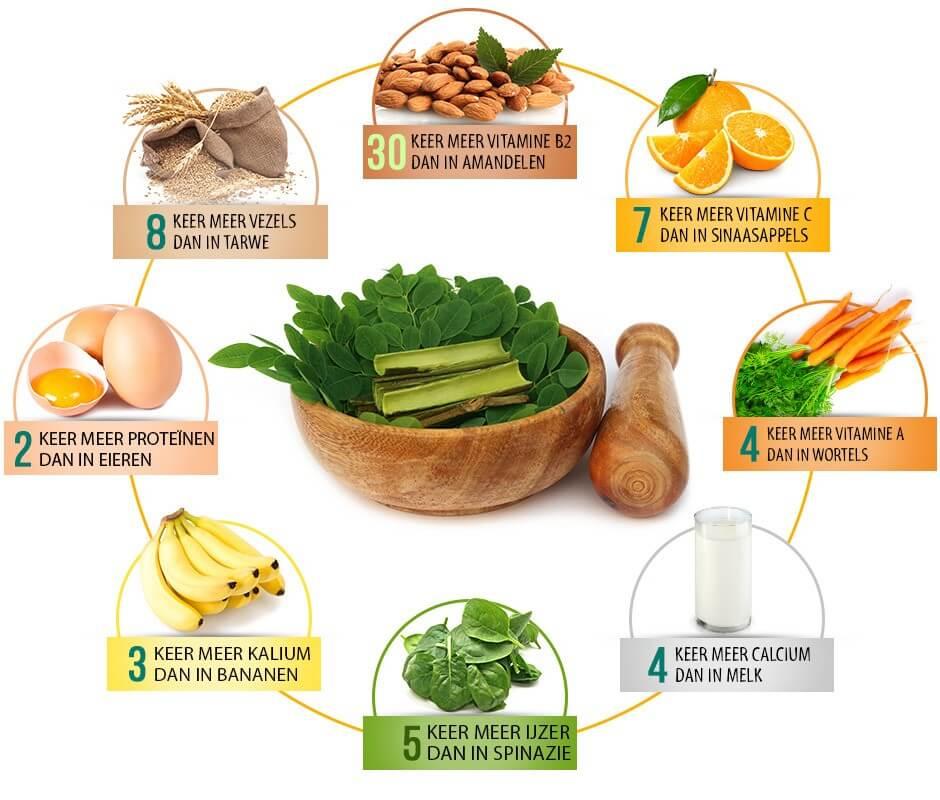 Infographic moringa - Kom moringa producten omringd door allerlei voedingswaren met voordelen van moringa