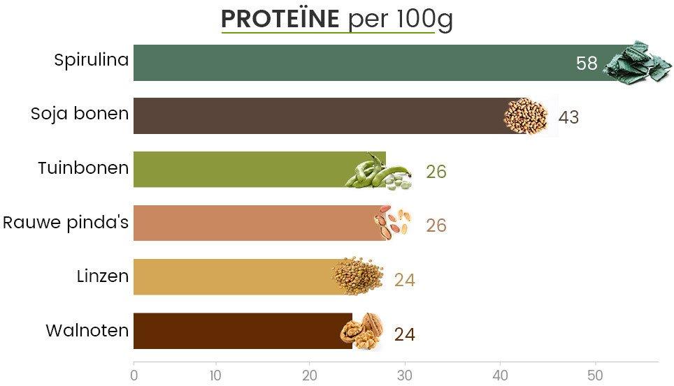 Infographic proteine - Proteine vergelijking in spirulina, sojabonen, tuinbonen, pinda's, linzen en walnoten