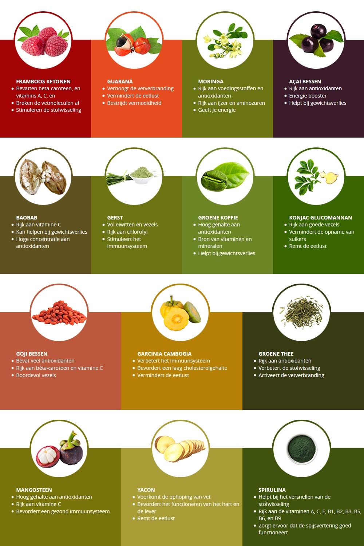 Infographic superfoods - Alle superfoods met daarbij hun eigenschappen en voordelen