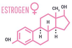 Tekening van het oestrogeen gehalte en systeem in het roze