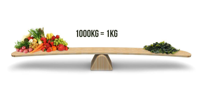 Gelijkenis aan voedingswaarde in 1000kg groene en fruit en 1kg spirulina
