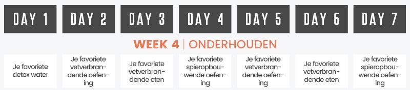Week 4 kalender onderhouden met dagelijkse instructies en tips
