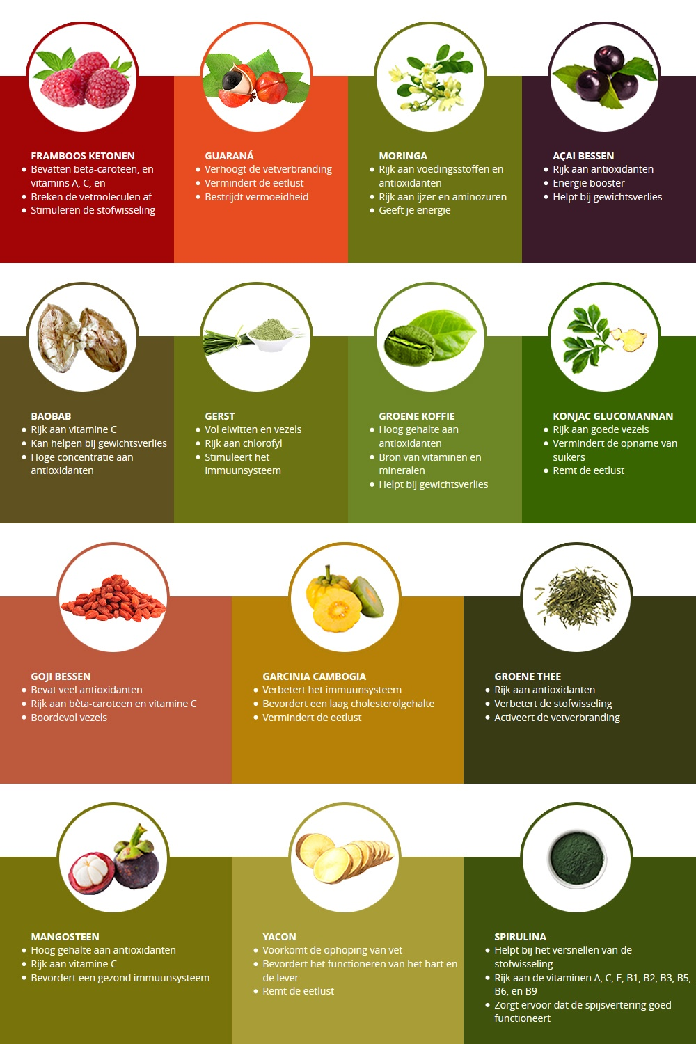 wwnl-superfoods-cat-page-banner